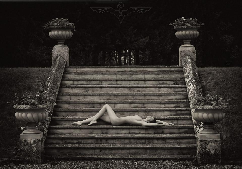 Image by Trevor Yerbury - Copyright 2012